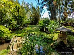 Grove Farm (8 of 16) (Chuck 55) Tags: grove farm kauai hawaii