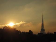 Remember Paris (nathaliedunaigre) Tags: paris urban urbain capitale toureiffel tower eiffel brouillard mist sun soleil nuages clouds arbres trees contraste contrast contrejour againstthelight sky