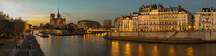 Twilight in the city of light (Howard Ferrier) Tags: france reflection cathedral plants waterway religiousbuildings bridge wall panorama tree dusk seine walking promenade residentialbuildings sunset paris river themes photography island architecture apartmentbuilding notredamecathedralparis europe iledefrance iledelacite apartmentblock flora vegetation walk