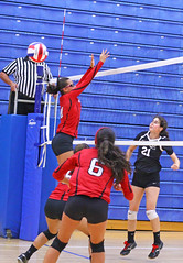 IMG_3054 (SJH Foto) Tags: girls volleyball high school mount olive mt team tween teen teenager varsity net battle spike block action shot jump midair