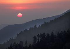 Sunset,  Great Smoky Mountains National Park (klauslang99) Tags: klauslang nature northamerica sunset greatsmokymountainsnationalpark tennessee trees