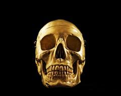 Skullduggery (DASEye) Tags: daseye davidadamson nikon skull skullduggery textures texture stilllife