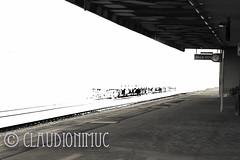 Spoon River Anthology Magrady Graham (claudionimuc) Tags: spoonriver edgarleemasters america selenio seppia crema poesia morti fernandapivano pivano antologia de andre pavesi 2016 art rural