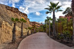Coast path (Nige H (Thanks for 6.5m views)) Tags: costaadeje path tenerife palmtrees natuer landscape