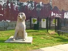 Dog Statue near Barking Lot (Downtown Memphis, (Jamie Leonard) Tags: dog statue downtown memphis tennessee