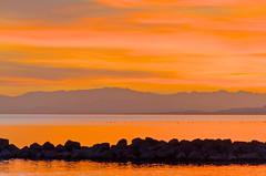 Variation sur le thème du Canigou 3 (jeanmichelchuiche) Tags: sunset mer france eau day cloudy seagull gull coucherdesoleil rochers viasplage canigou mouettes sunsetatviasplage farinette méditerranée