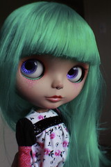 For you? (frankie.DARLING) Tags: doll teal frankie blythe custom sh darling rbl sunshineholiday blythefactoryscalp