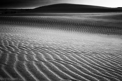 Shayne Skower - Desert Landscape Photography (SkowerPhotography) Tags: arizona newmexico art landscape photography landscapes desert patterns whitesands designs deserts fineartphotgraphy blackandwhitefineartphotography shayneskower
