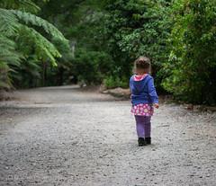 Strollin' (G Love Photos) Tags: girl gardens walking 50mm nikon path walk daughter young mount nicholas dandenong alfred ferns f18 sassafras d3100