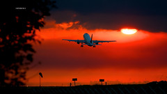 Taca Sunset Takeoff (wittowio) Tags: aviation airbus spotting airliner aviacion mroc