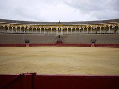 Plaza de toros de la Real Maestranza de Caballería de Sevilla (michael.robb) Tags: architecture spain seville parasol metrosol