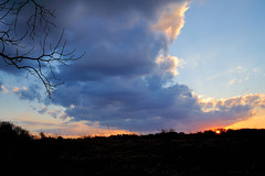 PennypackEco_02_15_2013_700_9033 (Jeff A1) Tags: sunset pennypack