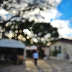 Lux (Mister Blur in the City of Light) Tags: blur nikon florida bokeh miami dusk desenfoque brianeno lux coconutgrove d60 artfestival keepcalm dayoflight snapseed misterblur artisintheheart ststephensworldart keepcalmandbokeh
