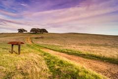 The Silent Road to Nowhere (Justin Lowery) Tags: california road trees sunset field grass purple unitedstates sony horizon hill southerncalifornia plains preserve temecula ecological murrieta santarosaplateau alpha77
