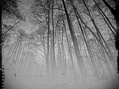 Am frühen Morgen... (Photography-Rainer Arend) Tags: