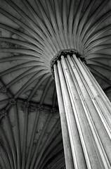 Chapter House Ceiling, Wells Cathedral, Somerset, UK (Pictures from the Ghost Garden) Tags: blackandwhite bw film monochrome 35mm mono blackwhite interiors cathedral boots cathedrals wellscathedral analogue blancetnoir hanimex edixa edixamat bootsfilm weissundschwarz