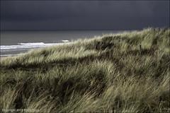 Katwijk aan Zee / The Netherlands (zilverbat.) Tags: sky holland green nature water netherlands clouds strand europa outdoor postcard nederland thenetherlands zee northsea urbannature katwijk duinen kust katwijkaanzee helmgras zeewater duinwaterleiding zilverbat flickrmoe