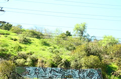 Agod / Scom (MR. NIC GUY ^.^) Tags: california urban streetart art landscape graffiti losangeles los angeles rk agod kog scom