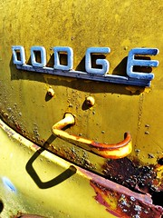 DODGE (tikitonite) Tags:
