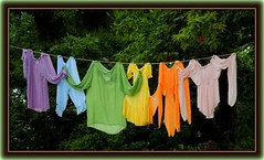 you can wear a rainbow (milomingo) Tags: park festival wisconsin bristol fun outdoors amusement clothing rainbow colorful fair medieval event fantasy laundry destination faire renfair themed renaissancefaire themepark multicolor attraction garments strungout