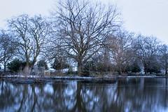 Boating Lake (janescanlan) Tags: park trees lake water dusk allxpressus