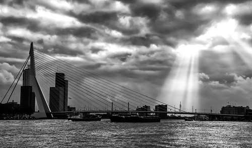 "Erasmus bridge in Rotterdam, Holland • <a style=""font-size:0.8em;"" href=""http://www.flickr.com/photos/68368751@N05/8609631112/"" target=""_blank"">View on Flickr</a>"