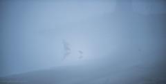 _DSC6953.jpg (Ingeborg Ruyken) Tags: morning mist fog spring frost nederland thenetherlands april lente ochtend naturephotography vorst empel zonsopkomst natuurfotografie 2013 maasuiterwaarden