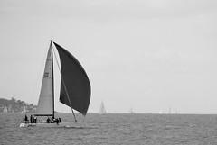 Yacht, Solent (scalespeeder) Tags: sea digital canon eos 350d rebel xt yacht solent dslr leeonsolent
