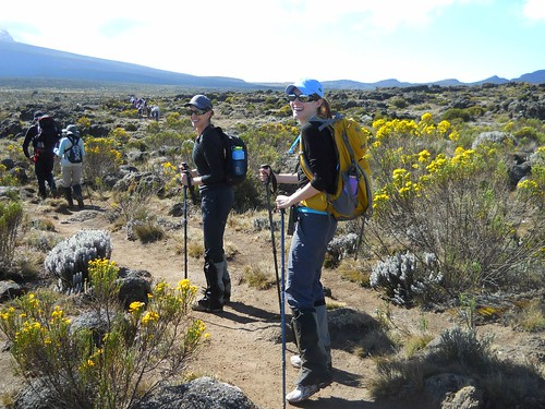 Trekking on the Shira Plateau
