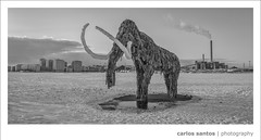 "Mammoth (Carlos ""Grury"" Santos) Tags: winter snow ice finland helsinki canon5dmarkiii grury rememberthatmomentlevel1 rememberthatmomentlevel2"