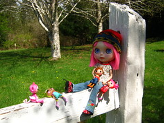 IMG_3213...Amor and her dollies have been fence walking today.  Now they are all tuckered out.