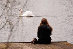 Melancholy (martinstelbrink) Tags: girl germany swan sigma nrw melancholy schwan nordrheinwestfalen melancholie a700 bornersee sigma120400mmf4556