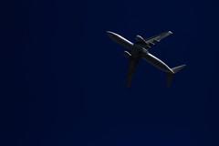 20160821_IMG_7727 (NAMARA EXPRESS) Tags: landscape airplane jetplane sky darksky deepsky dark shine summer fine outdoor color toyonaka osaka japan canon eos 7d tamron sp 70300mm f456 namaraexp