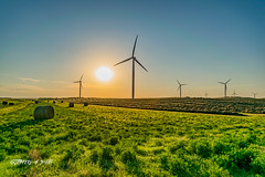 DSC_2108 (Jeffery A. Smith) Tags: bottineau northdakota nikond3300 nikon windtower wind renewable sunset field windfarm electric electricity windpower turbine windmill nd2016contest