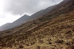 Qinghai Province/Tibetan Plateau, China birding tour (Hesperia2007) Tags: asia china qinghaiprovince tibetanplateau scenery view habitat mountains culture geology slopes shrubbery