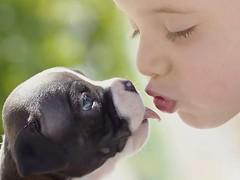 TERNURA (Susana M.L.) Tags: ternura cachorro beso mascota perro animal
