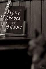 Fifty shades of... (Kym.) Tags: cat thenetherlands kitty thegang witha josefien cafe otherpeoplesgang cafekitty fiftyshadesofbeer