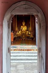 Wat Phan Tao (Sr. Fernandez) Tags: portrait orange canon thailand temple eos gold asia retrato buddha religion steps monk tailandia 5d chiangmai naranja buda templo escaleras oro mkii monje watpantao watphantao 5dmarkii