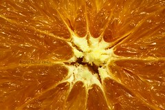 (laszlofromhalifax) Tags: summer food orange macro texture fruit juicy healthy pattern sweet cut eating juice tasty center fresh eat slice half tropical citrus organic freshness starshape cposeup