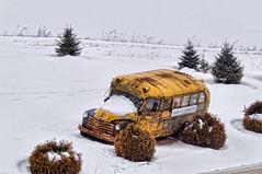 No School Today! (Deanna_Rose) Tags: digital photography winner challenge beginner thechallengefactory