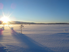 130209_Lappland_39