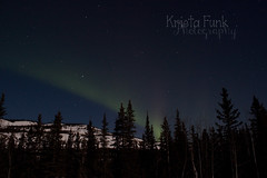 Another Streak (Krista Funk's Photos) Tags: sky night stars northernlights auroraborealis northklondikehighway