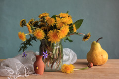 The Yellow Glistens (panga_ua) Tags: light stilllife color art water fruit composition scarf canon spectacular spring artwork natural artistic availablelight joy naturallight ukraine poetic creation cardboard pear imagination natalie yellows oakwood arrangement glassjar yellowflowers hazelnut tabletop dandelions bodegon naturemorte panga artisticphotography rivne naturamorta taraxacum artphotography palegreen sharpfocus gauzy liverleafs woodentabletop  nataliepanga theyellowglistens littleceramicvase