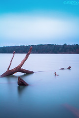 Calm and soft... (AHMAD AL-ABDAN |  ) Tags: sea lake seascape canon river landscape eos flickr ar picture follow 7d arkansas ahmad scape ahmed edit russellville facebook dardanelle d7  abdan    2013          amendo alabdan 7  amend0