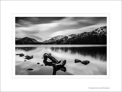 Grasmere Lake Log BW (Marcus Castle) Tags: lake district grasmere lakedistrict landscapephotograph