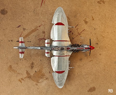 The Shark (Ruben Botelho) Tags: plane paper shark navy propeller warplane monoplane scratchbuild