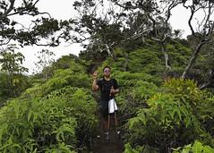 Peace (CNorth2) Tags: trees usa mountains canon hawaii peace koolau ridge trail hiker honolulu ferns g11 ohia kuliouou uluhe