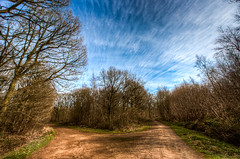 15/52 Step into Spring (Mark Seton) Tags: essex hdr uttlesford countyofessex carverbarracks rowneywoods
