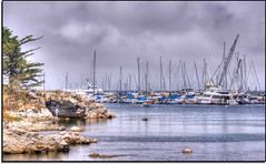 (scrapping61) Tags: california feast photomanipulation boats bay monterey legacy 2012 masterclass swp dockbay vividimagination forgottentreasures artdigital dreamplaces scrapping61 sharingart awardtree daarklands trolledproud trollieexcellence artnetcontemporary exoticimage pinnaclephotography poeexcellence digitalartscene dockexcellence masterclassexhibition netartii masterclasselite covertpaintrs