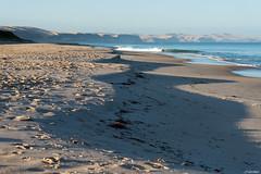 Australie - Yankalilla Bay (jf garbez) Tags: ocean voyage travel sea mer beach landscape coast nikon wave australia cte nikkor paysage vague southaustralia plage nationalgeographic australie oceania ocan d600 2485mm carrickalinga ocanie nikond600 australiemridionale nikonpassion nikonflickraward yankalillabay mygearandme mygearandmepremium mygearandmebronze mygearandmesilver nikkor240850mmf3545